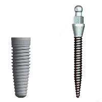 traditional implant next o a mini implant